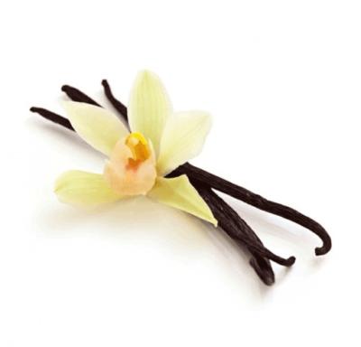 vanil-cvetok
