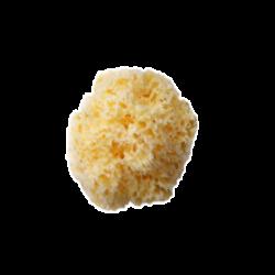 Морские губки Honeycomb отбеленные